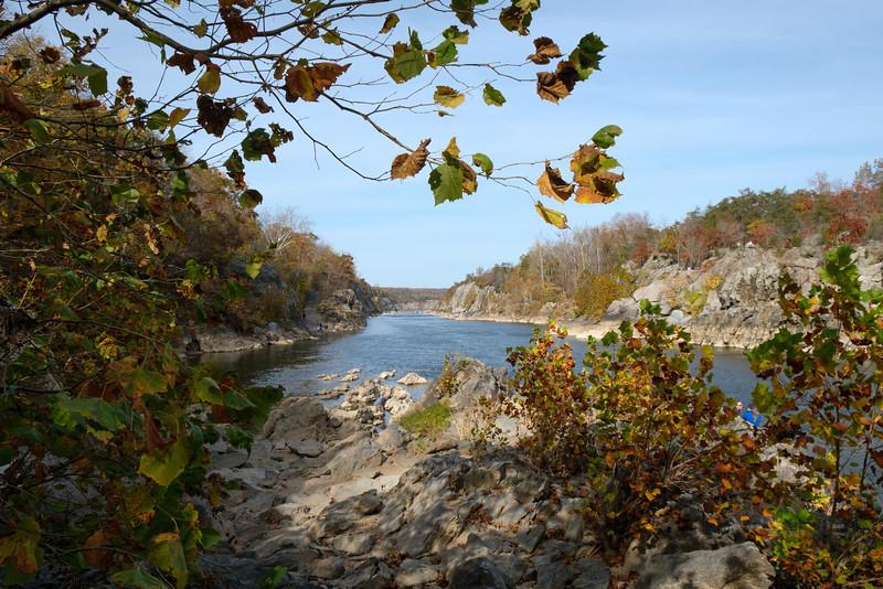 20161106 093 Great Falls hike.jpg
