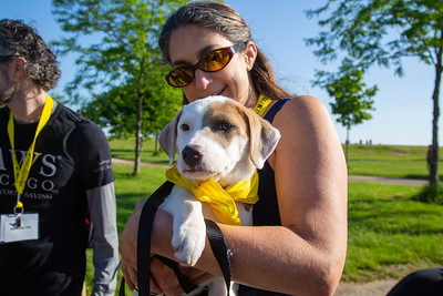 2018 PAWS Chicago 5K
