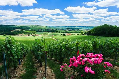 6. Le massif Saint-Thierry et les vallées de la Vesle et de l'Ardre