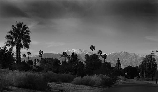 PALM SPRINGS- LANDSCAPES
