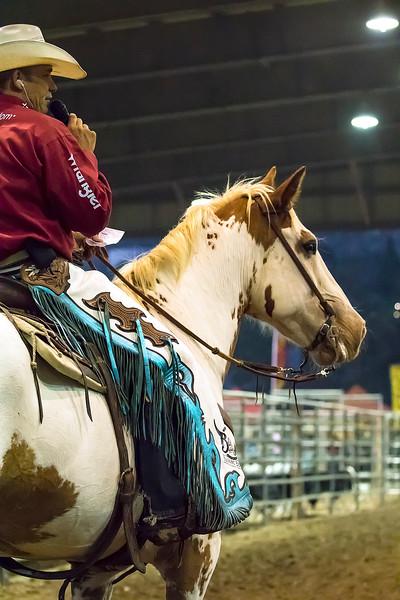 Friday Ranch Rodeo - Norco Fair