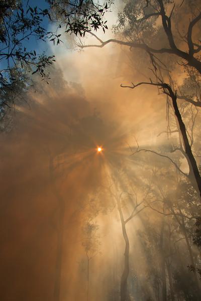 Sun through the smoke