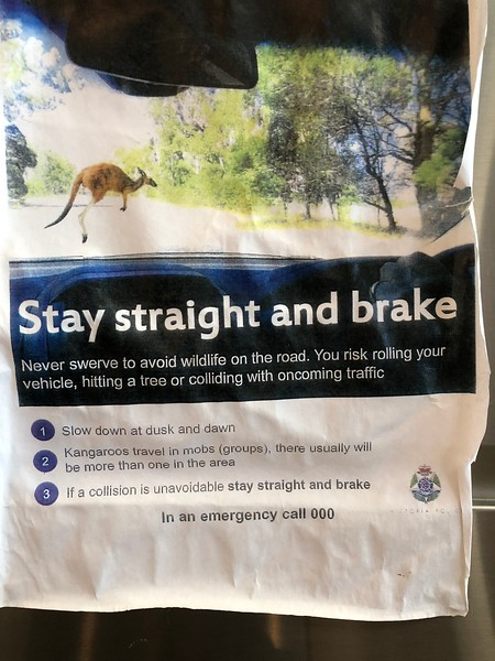 Kangaroo Warning.JPEG