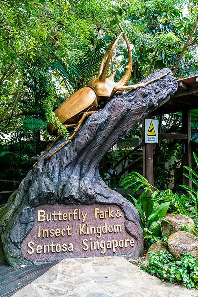 Butterfly-Park-9894.jpg