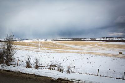 2014 Calgary
