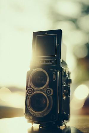 Sony 50mm f/1.4 FE Zeiss