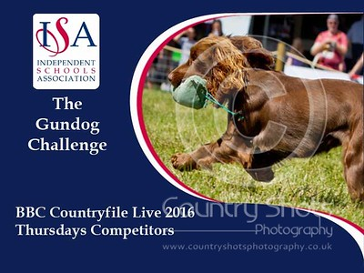 BBC Countryfile Blenheim Palace 2016 - ISA Gundog Challenge Thursday Competitors