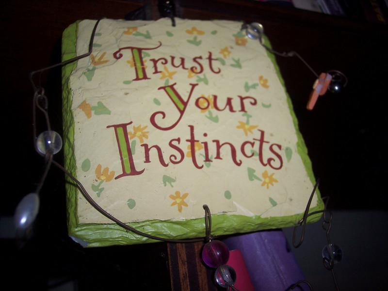 SAYING_.TrustInstinctsjpg.JPG