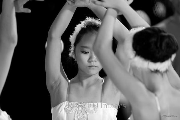 2012 Swan Lake Bardavon Show - Act 1