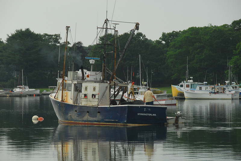 HMS_7802.jpg