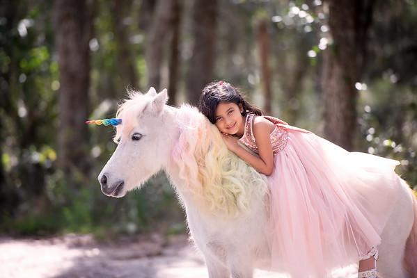 Unicorns Feb 2020 - Shah
