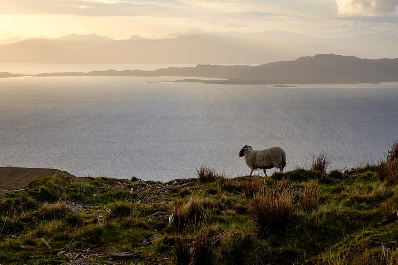 20190506 Isle of Skye 287.jpg