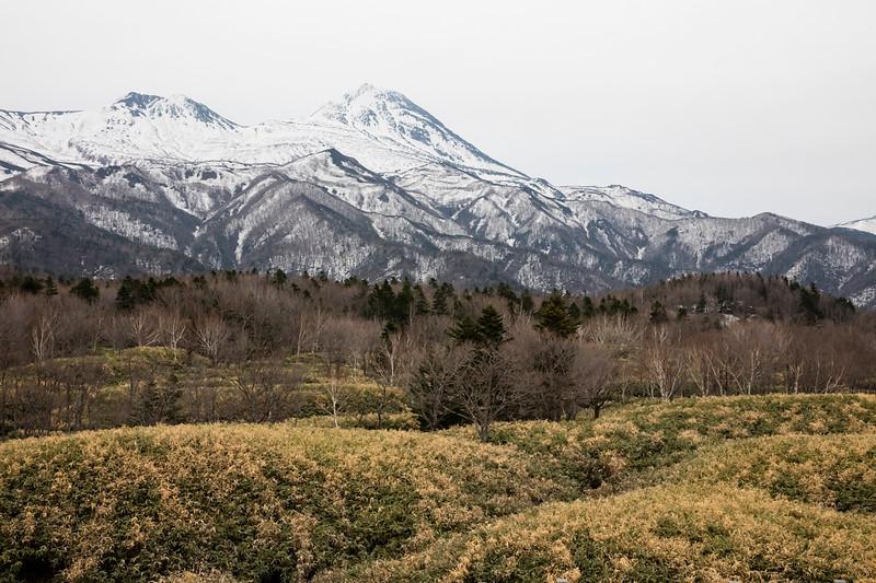 Habitat, Shiretoko National Park, Utoro, East Hokkaido, Japan 2018.04.25-3879.jpg