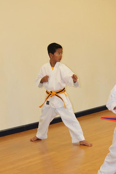 Jr. Kicks Beginner class