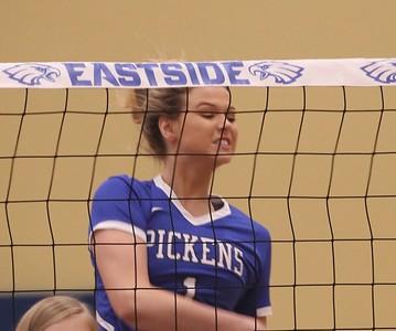 2017 VB: Pickens at Eastside