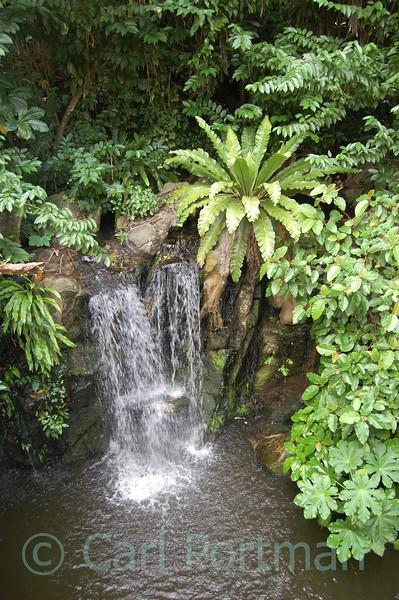 At Singapore Zoo Nov 08 (173).JPG