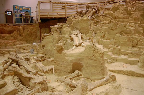 Mammoth Excavation Site