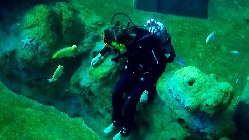 Underwater Walk Edit 45secs.00_00_26_16.Still033.jpg