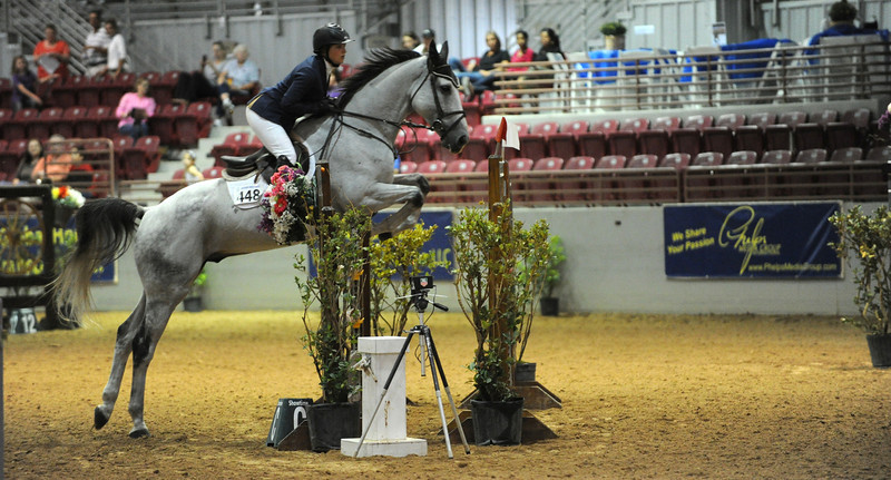 Horse show (46).jpg
