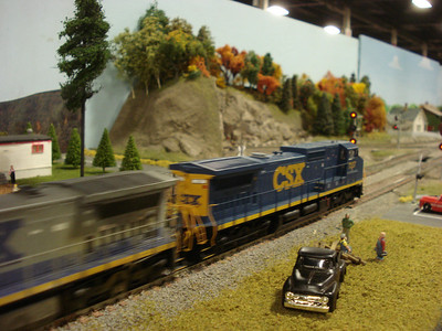 <font color=#3355FF>Model Railroads</font>