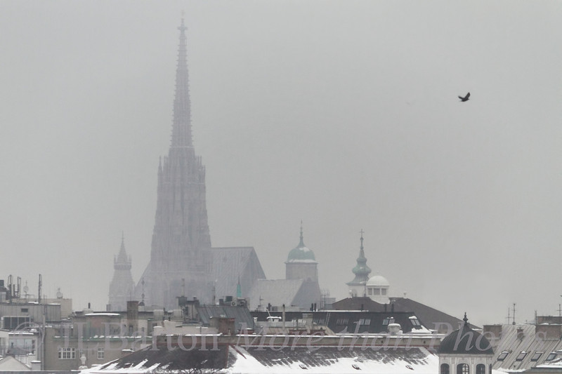 Still Winter 2013-01-29  Yes, Virginia, there is still a city behind the fog.  Enough already!  This is typical winter weather in Vienna - but usually less snow.  For a change (and headaches), the next few days are forecast to be +10 or 12C (50F), then back to freezing again. Many thanks for the comments on yesterday's vineyard shot.  I should try to get out of Vienna into the sunshine, but I have to take my wife to the doctor.  C'est une vie, I guess.