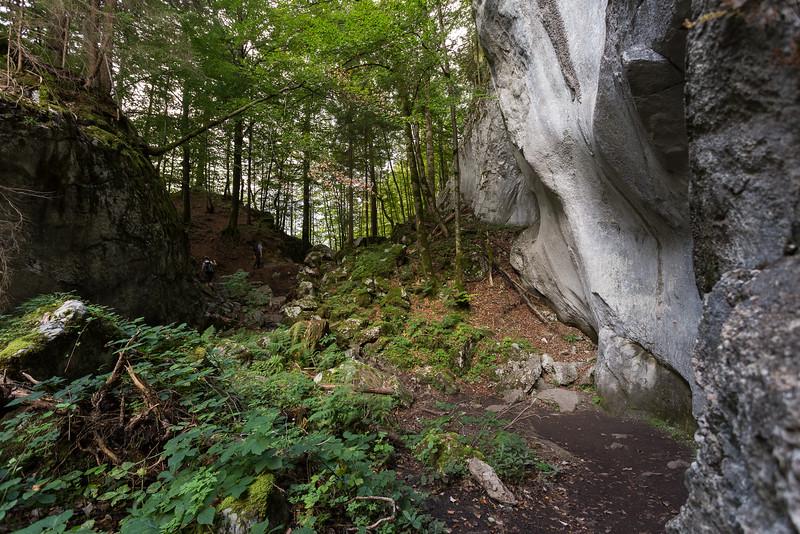savoie-sixt-fer-a-cheval-foret-canyon-village-orage_D3_6725.jpg