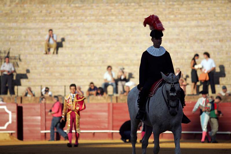 Alguacilillo or horseback official. Bullfight at Real Maestranza bullring, Seville, Spain, 15 August 2006.