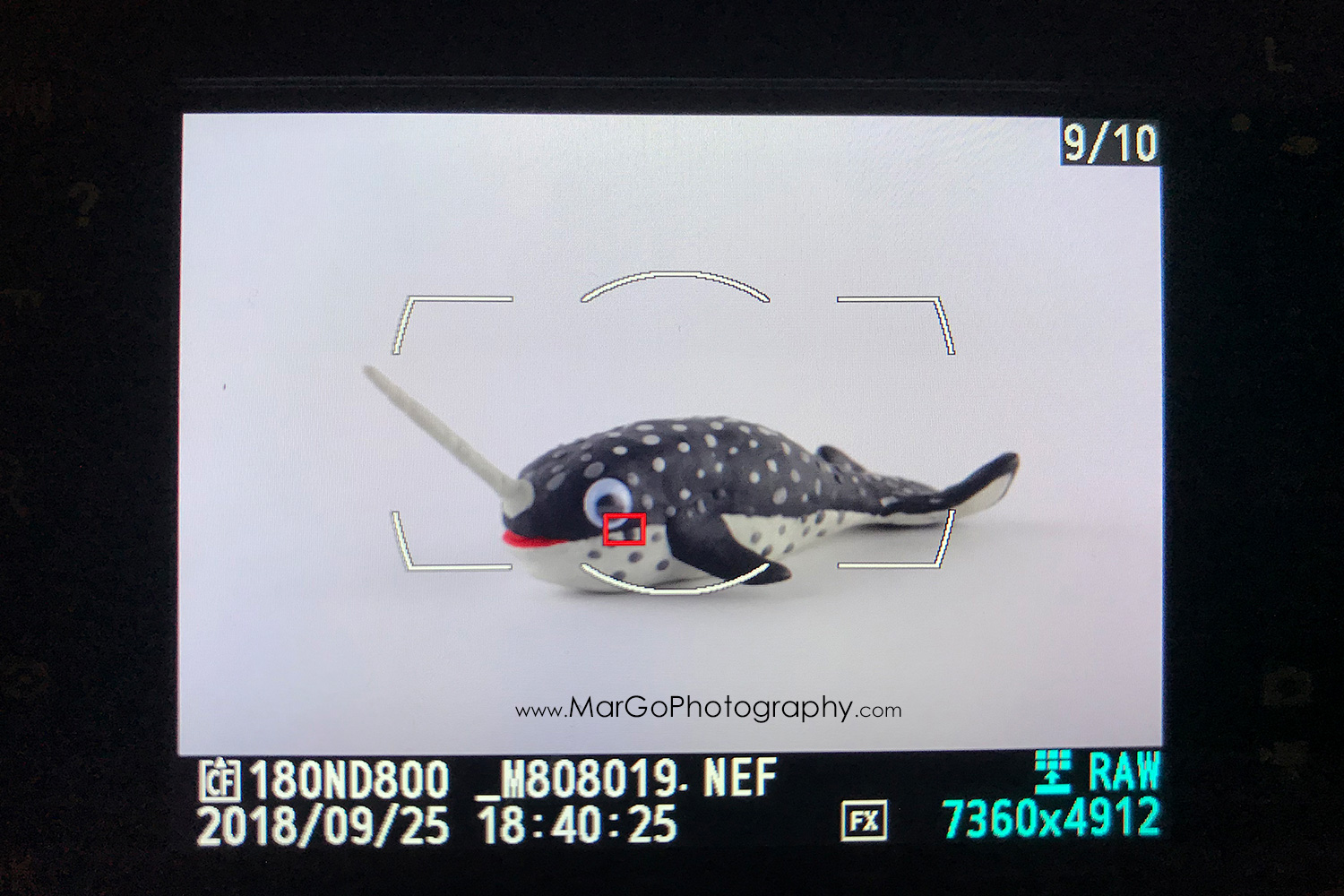 photo of grey clay narwhal on camera LCD screen