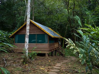 Chaa Creek Lodge and surroundings