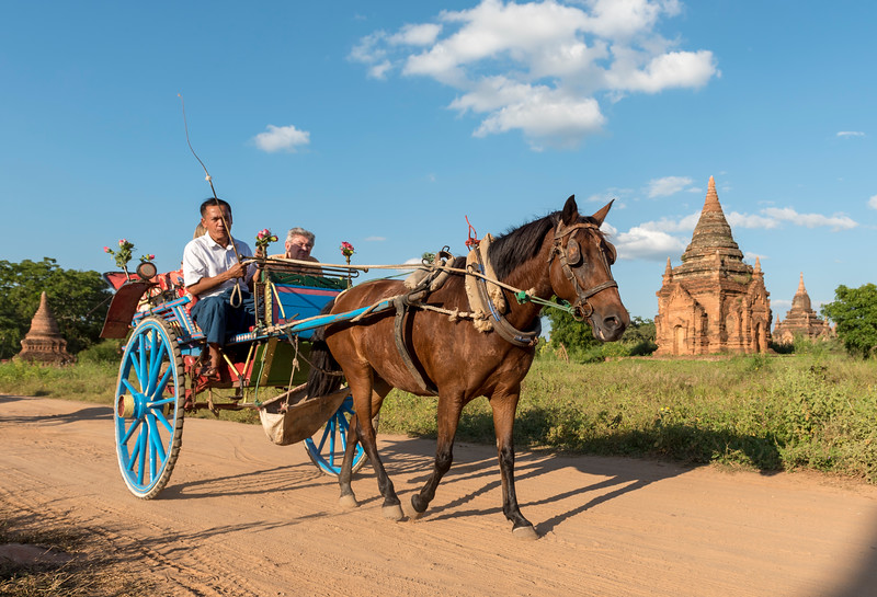 Tourist Horse Cart, Bagan