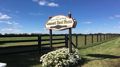 Concord Stud 2018