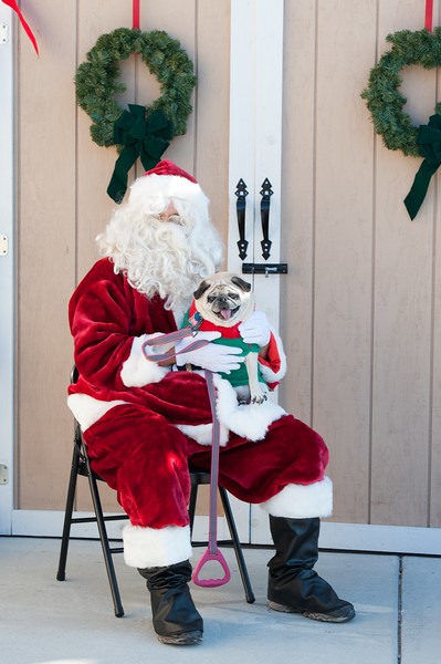 Photos with Santa at Naperville Humane Society by Maritza Partida 2017-3150.jpg