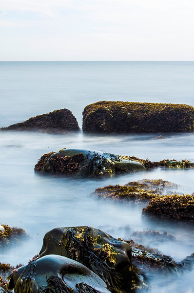 coastalrockscovered.jpg