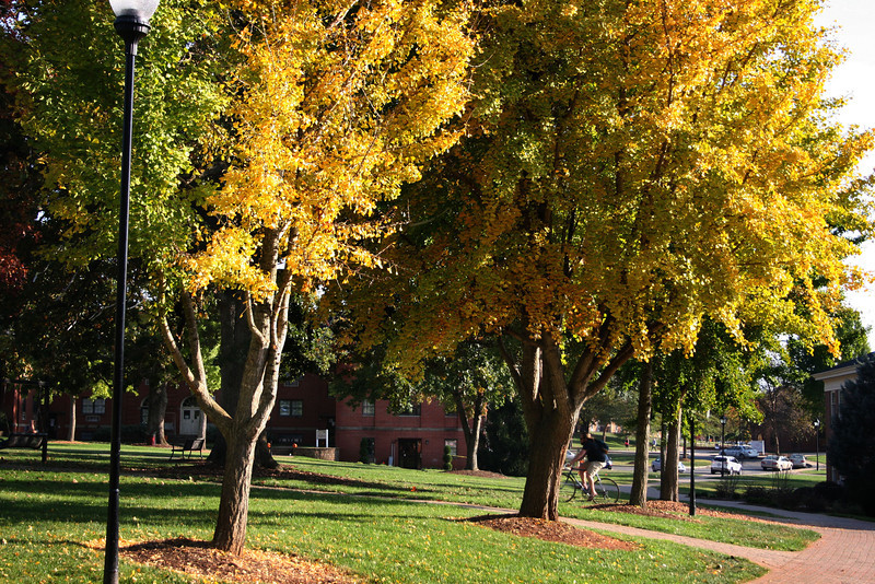 The Gardner-Webb University quad on a beautiful Fall day.