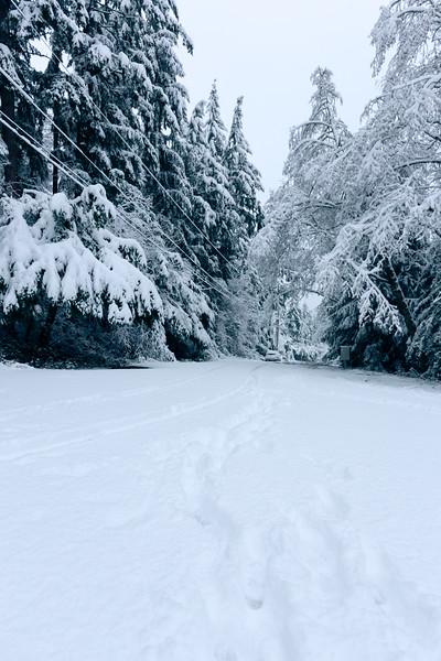 Feb 2017 - Snowmageddon