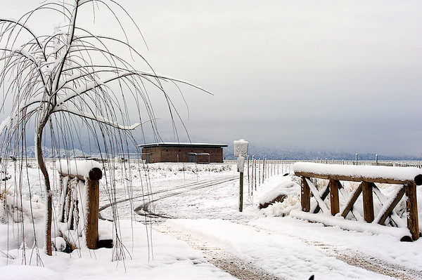 Private Vineyard Estates