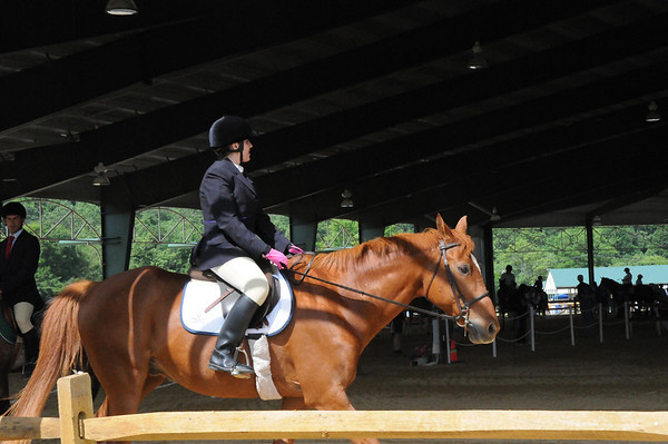 2012 Equestrian State Games