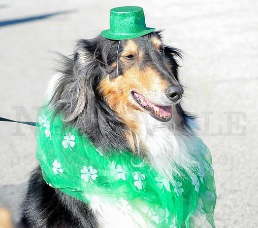 WSI St. Patrick's Parade 2018 Web