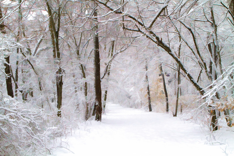 Smithville Snow Trails.jpg