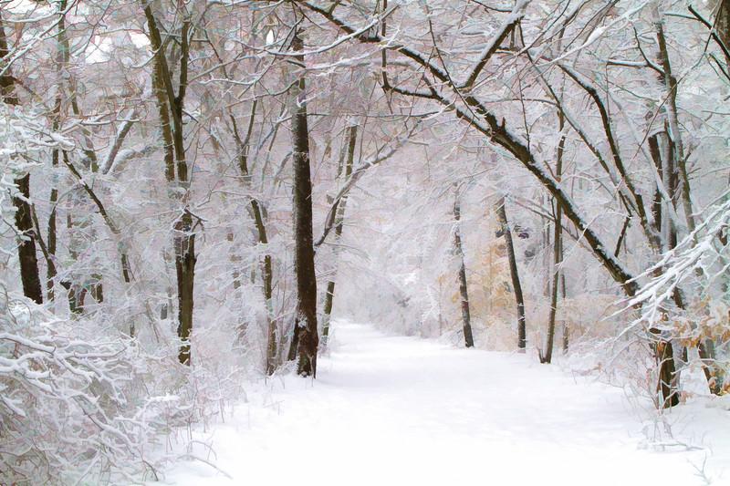 Smithville Snow Trails.jpg