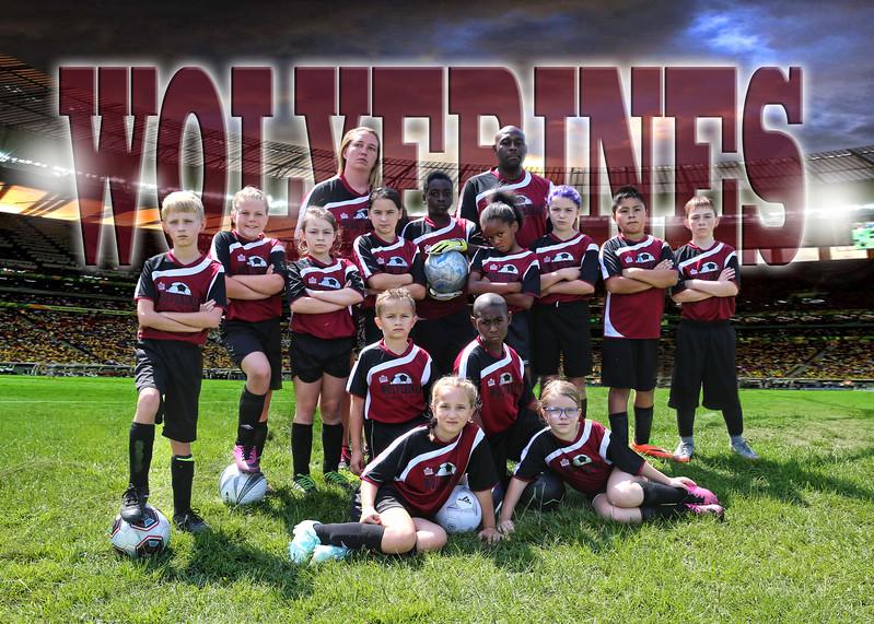 wolverines team.jpg
