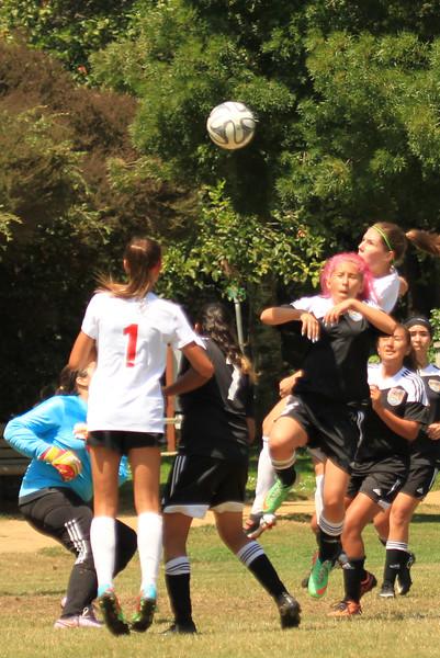 Fury Soccer 2015