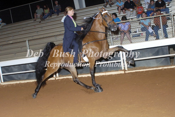 CLASS 27  GA WALKING HORSE EXHIB  ASSN MEMBERS SPECIALTY