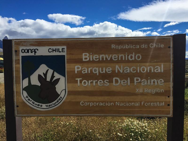 Patagonia18iphone-7011.jpg