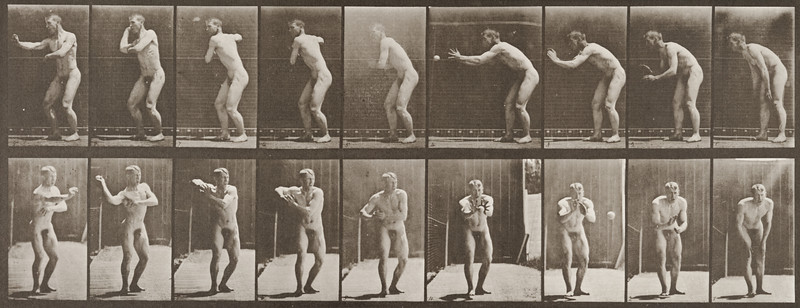 Nude man catching and throwing baseball (Animal Locomotion, 1887, plate 281)