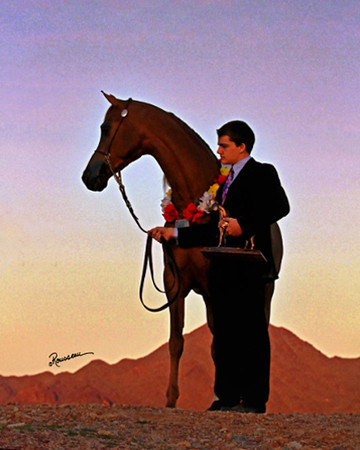Scottsdale 2013 Session