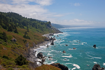 Redwoods, Whales, and the Oregon Coast