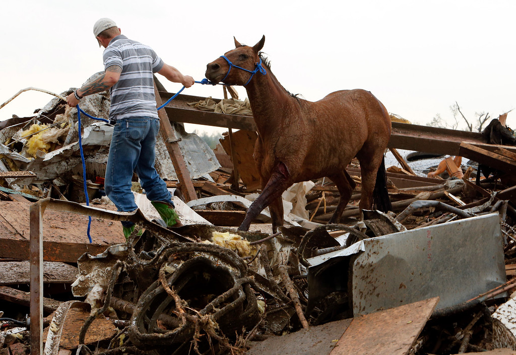 . Rescuers recover a horse from the remains of a day care center and destroyed barns, Monday, May 20, 2013  in Moore, Okla. A monstrous tornado roared through the Oklahoma City suburbs, flattening entire neighborhoods with winds up to 200 mph, setting buildings on fire and landing a direct blow on an elementary school. (AP Photo/The Oklahoman, Steve Sisney)