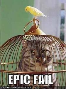 cat cage fail.jpg