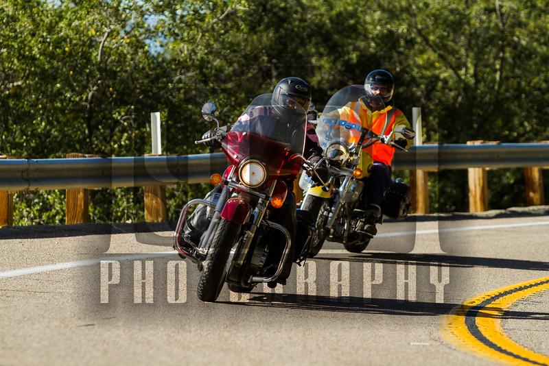 20141228_Palomar Mountain_0045.jpg